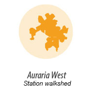 Illustration representing walk shed around Auraria West Station
