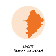 Illustration representing walk shed around Evans Station