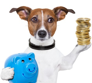 a dog holding a piggy bank and a stack of coins