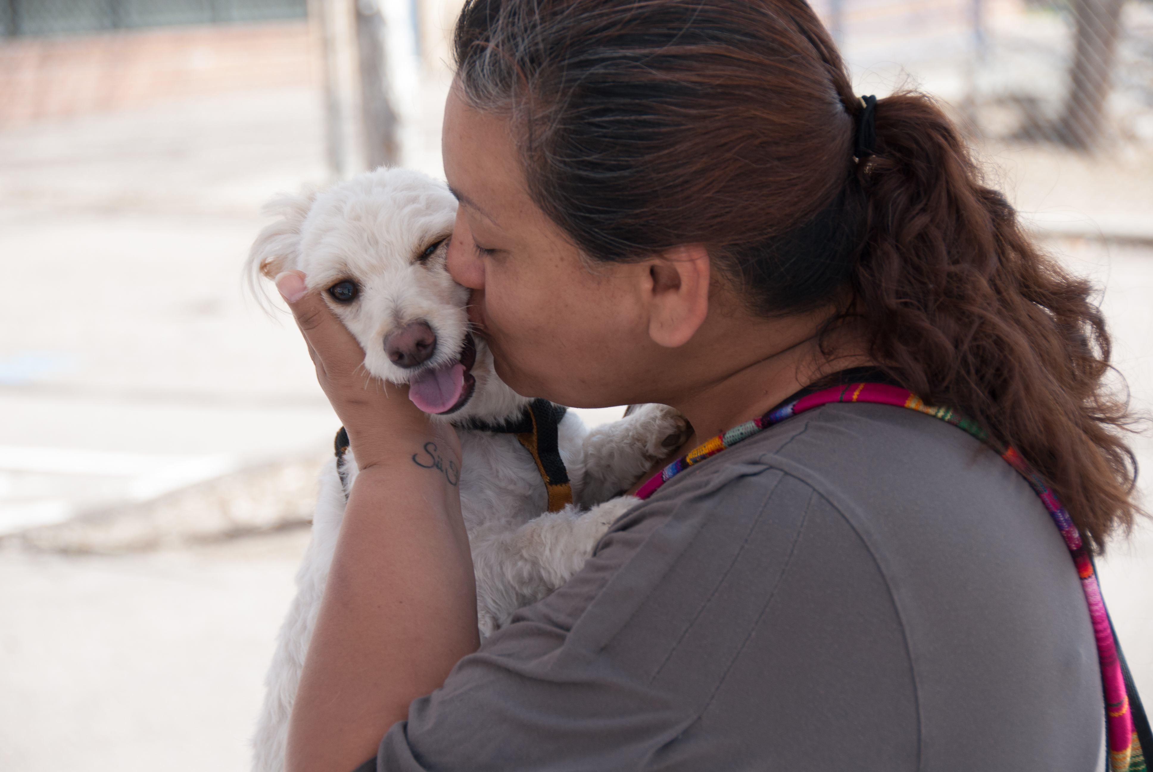 Photo of Safe Haven Program pet owner with small dog