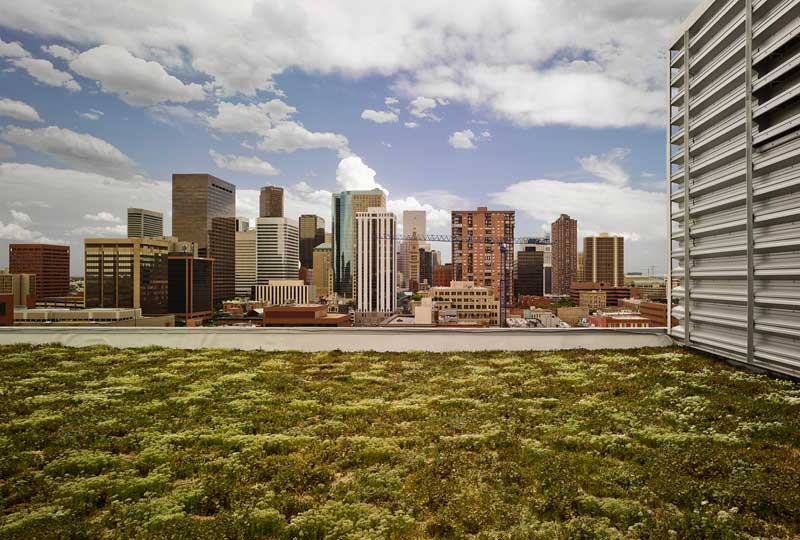Green Roof on the EPA's Region 8 Headquarters in Denver