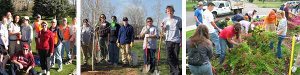 volunteer groups planting trees, maintaining gardens