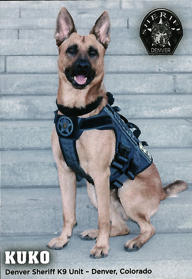 Denver  Sheriff K9 Unit, Kuko