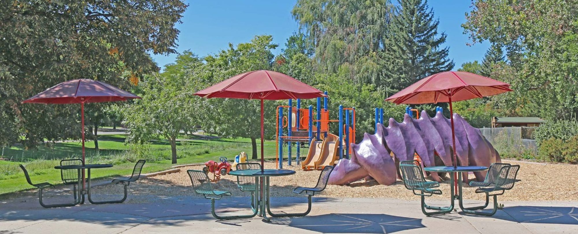 McWilliams Park playground and picnic site