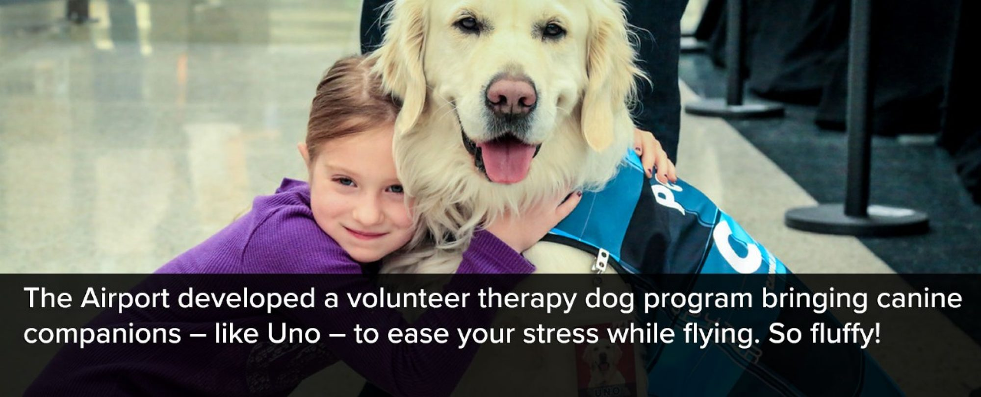 Photo of young girl with the DIA therapy dog, Uno. The Airport developed a volunteer therapy dog program bringing canine companions, like Uno, to ease your stress while flying. So fluffy!