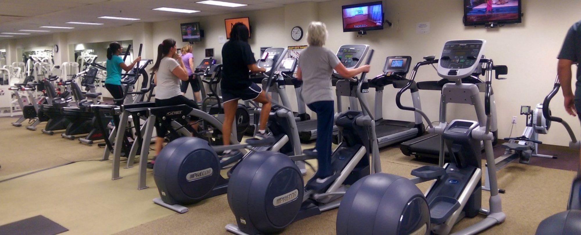 Photo of row of elliptical machines