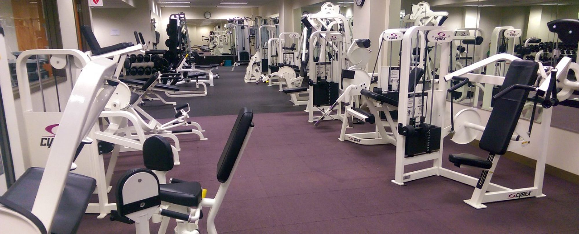 photo of leg press machines