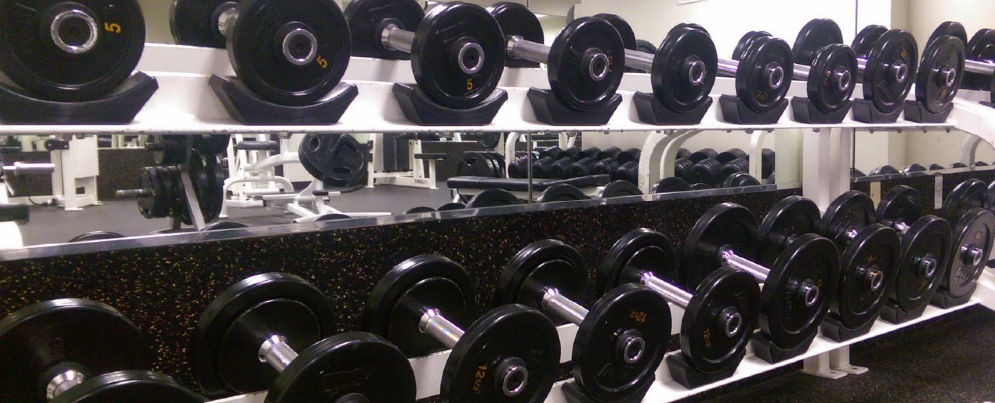 photo of free weights on racks