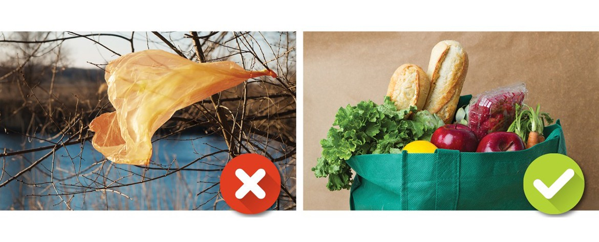 Bring a reusable grocery bag instead of using the plastic ones