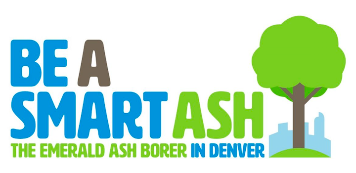 Be a smart ash. The emerald borer in Denver